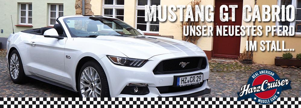 Banner_Mustang_2015_neu2