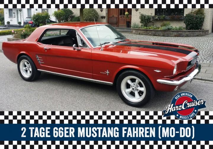 2 Tage 66er Ford Mustang fahren (Mo-Do)