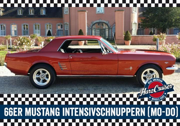 66er Mustang Intensiv-Schnuppern - 3 Stunden