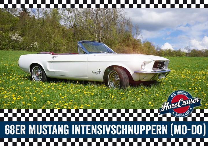 68er Mustang Intensiv-Schnuppern - 3 Stunden
