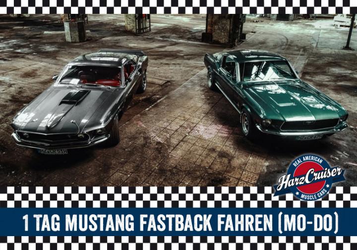 1 Tag 67er/69er Mustang Fastback fahren (Mo-Do)