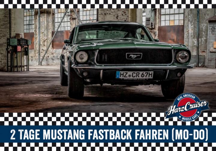2 Tage 67er/69er Mustang Fastback fahren (Mo-Do)