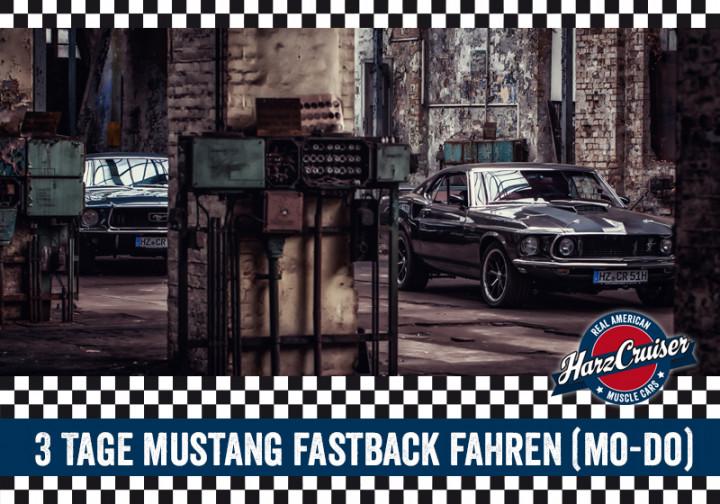 3 Tage 67er/69er Mustang Fastback fahren (Mo-Do)