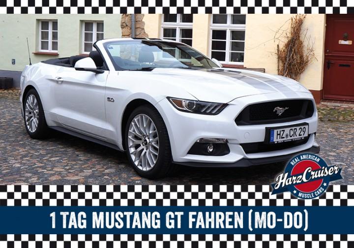 1 Tag Mustang GT fahren (Mo-Do)