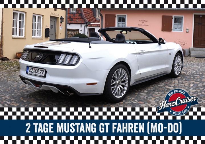 2 Tage Mustang GT fahren (Mo - Do)