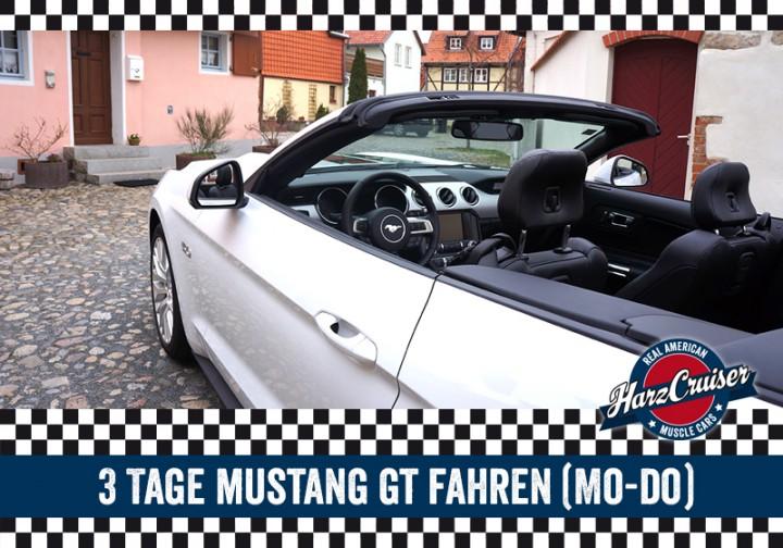 3 Tage Mustang GT fahren (Mo - Do)