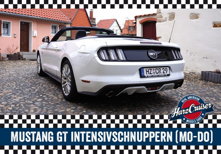 Ford Mustang GT Intensiv-Schnuppern - 3 Stunden