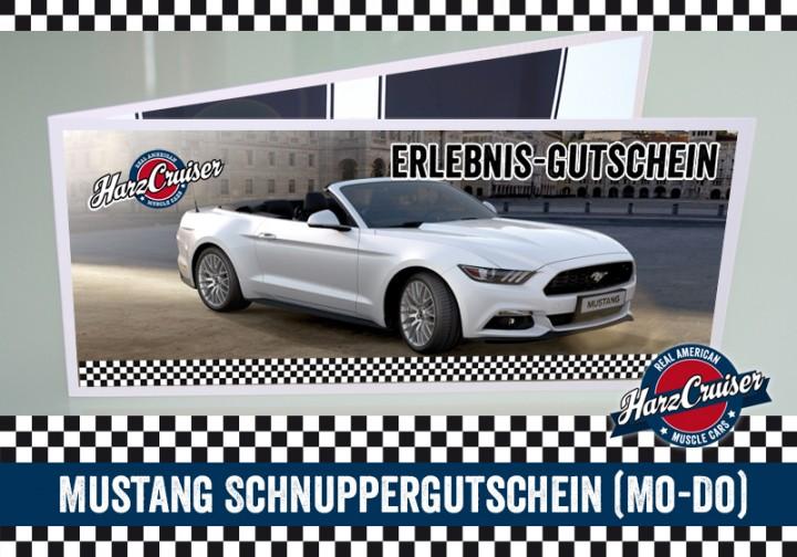 Mustang Intensiv-Schnuppern - 3 Stunden - Gutschein