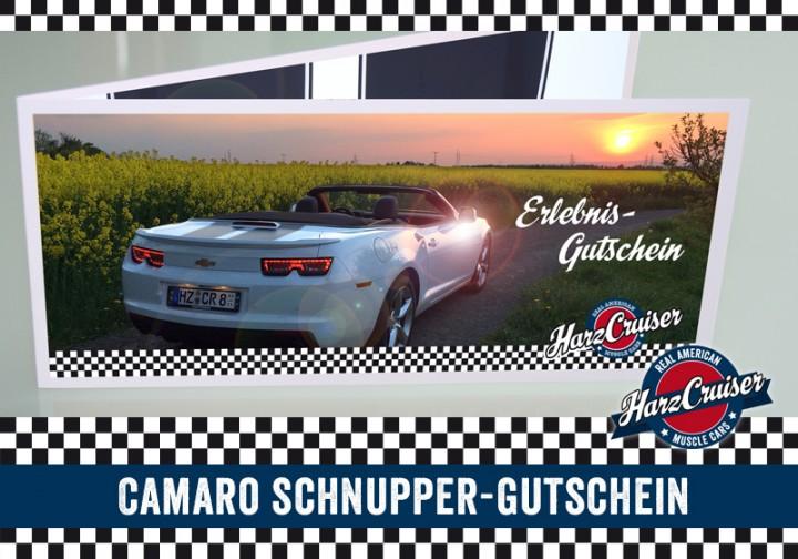 Camaro Intensiv-Schnuppern - 3 Stunden - Gutschein